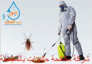 شركة مكافحة حشرات بالمجمعة