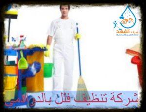 شركة تنظيف فلل بالدوادمي